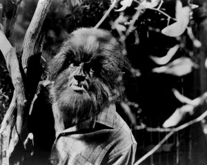 Alex Stevens as the werewolf on 'Dark Shadows.'